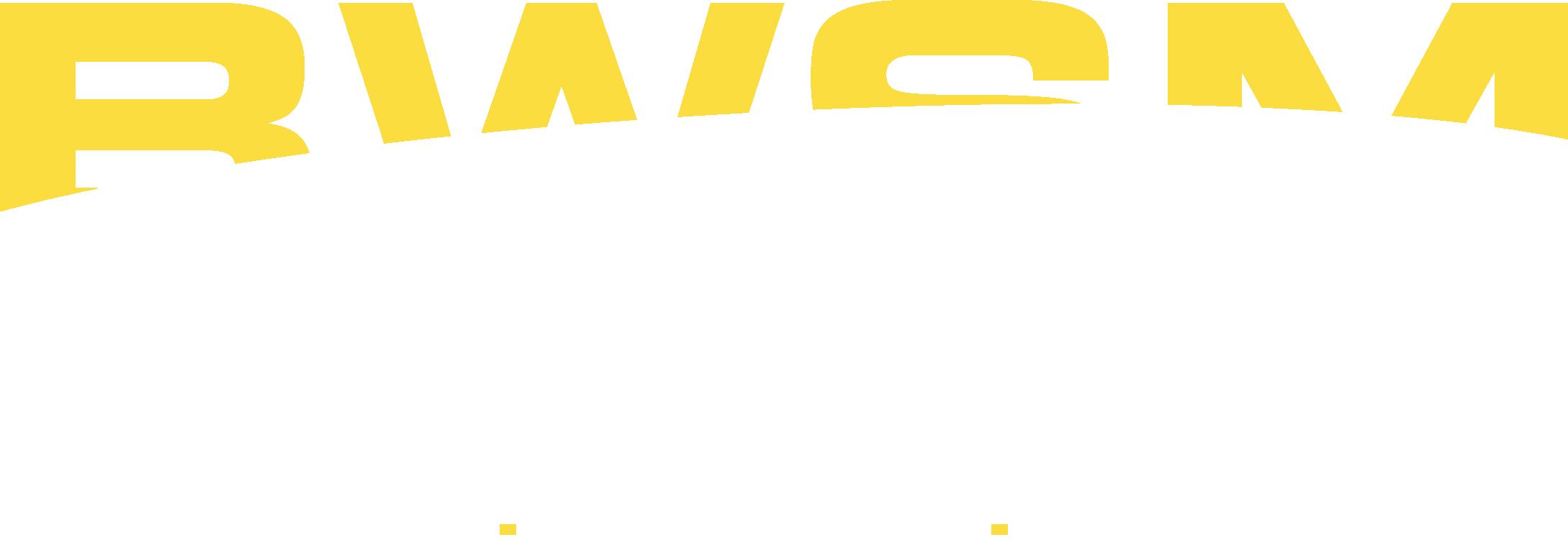 BWS Montagen